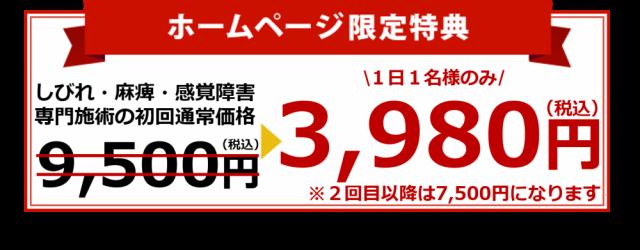 オファー3980円